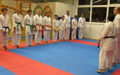 Ein Regenbogen an neuen Gürtelfarben -Kyu-Prüfung in der TSG Karate-Abteilung!